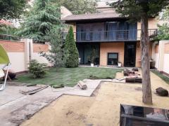 Рулонный газон, посевной газон в Одессе